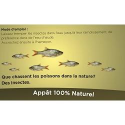 Appât pour la pêche larve entières soufflées. asticot - 50 grammes Pêches et appâts novealand ENT-50-PE