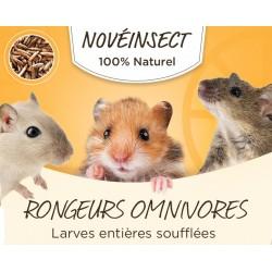 novealand Ganze gepuffte Larven für Ihre Nagetiere 50 Gramm ENT-50-RO Snacks und Nahrungsergänzungsmittel