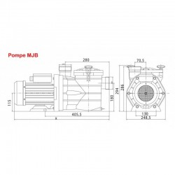 19 m3/h Pompe piscine auto-amorçante MJB Pompe VIPOOL SMJBHG150