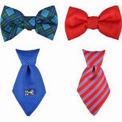 Accessoire pour collier cravate ou Noeud papillon. bleu ou rouge. pour chien Collier Flamingo FL-518993