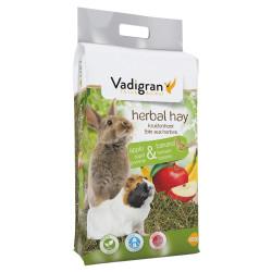 VA-11164 Vadigran Nourriture foin de fleur et fruit pomme, banane 500 gr Comida y bebida