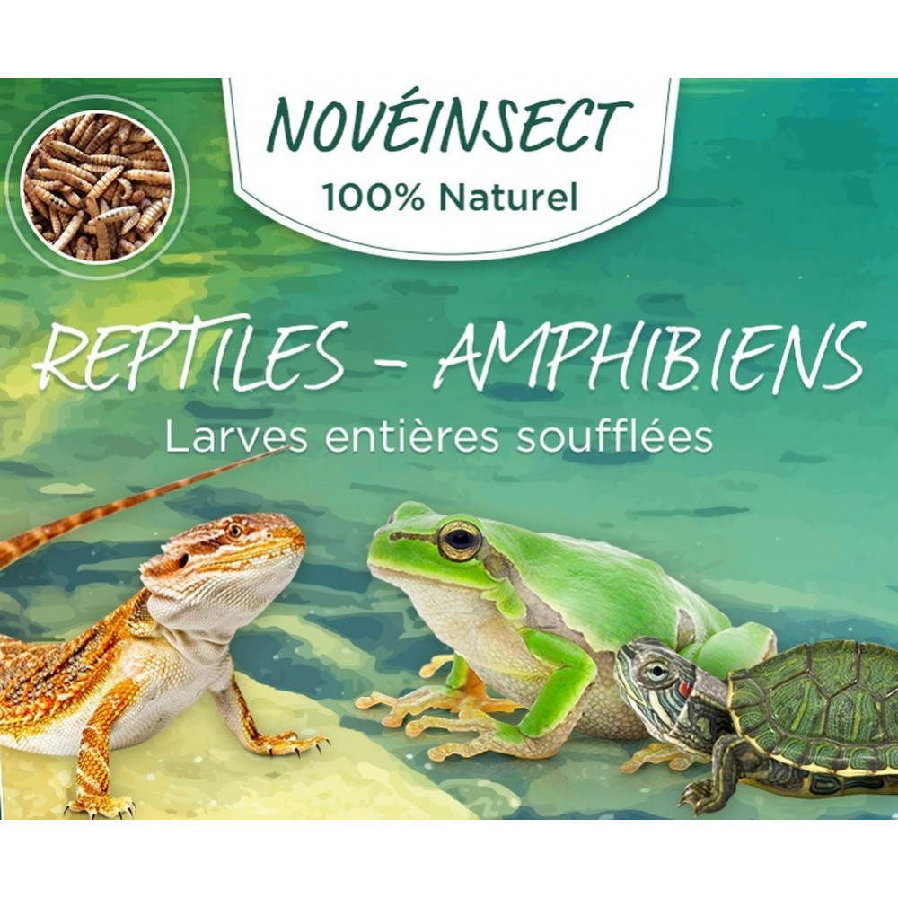 Whole puffed reptile larvae - amphibians 50 grams jar Noveland food ENT-50-LEZ