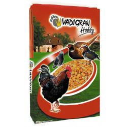 Alimentación Hobby maíz francés 20 kg Vadigran food VA-254200