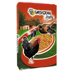 VA-254200 Vadigran Alimento para pollos - Hobby maíz francés 20 kg Comida y bebida