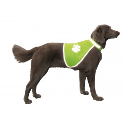 VA-78314 Nobby Gilet de sécurité taille S 50 cm pour chien Seguridad de los perros