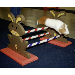 kerbl Agility Kaninhop obstacle, for rodents and rabbits, size: 62 cm by 33 cm and 34 cm Games, toys, activities