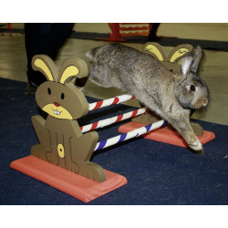 Obstacle Agility Kaninhop pour rongeurs et lapins 62 x 33 x 34 cm Jeux, jouets, activités kerbl KE-82855