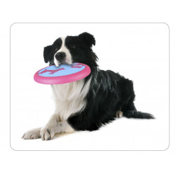 Flamingo FL-519568 Frisbee AMELIA ø 22 cm . dog toy Jeux