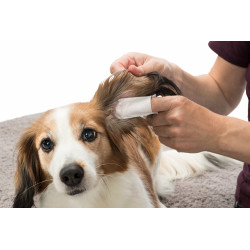 Doigtiers de soin pour les oreilles. pour animaux .50 pieces Soin et hygiène  Trixie TR-29392