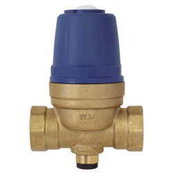 "Interplast SREGMEMB34 diaphragm pressure reducer - 3/4"" - 3/4 Plumbing"