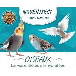 Larves entières déshydratées pour vos oiseaux pots de 90 grammes - aliment complémentaire Nourriture novealand ENT-90-O
