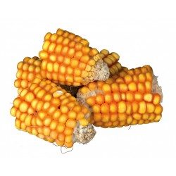 Trozos de maíz en mazorca 300 gr Trixie Food TR-60289