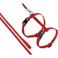 Flamingo FL-1031204 Harnais et laisse de 1.10 mètre pour chat. couleur rouge collier laisse cage