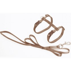 Flamingo FL-1031207 1.10 meter harness and leash for cats. Taupe color collier laisse cage
