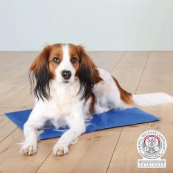 Trixie 90 x 50 cm Erfrischungsmatratze für Hunde TR-28686 Hund