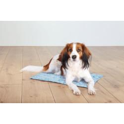 Trixie 50 x 40 cm Erfrischungsmatratze für Hunde TR-28777 Hund