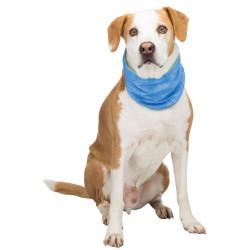 TR-30138 Trixie copy of Bandana rafraîchissant pour chien T M 28-40 cm Collar