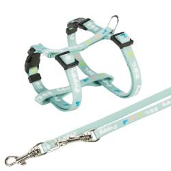 Trixie Imbracatura junior per cucciolo con guinzaglio. Dimensioni: 23-34 cm/8 mm. colore verde. TR-15345 pettorina per cani