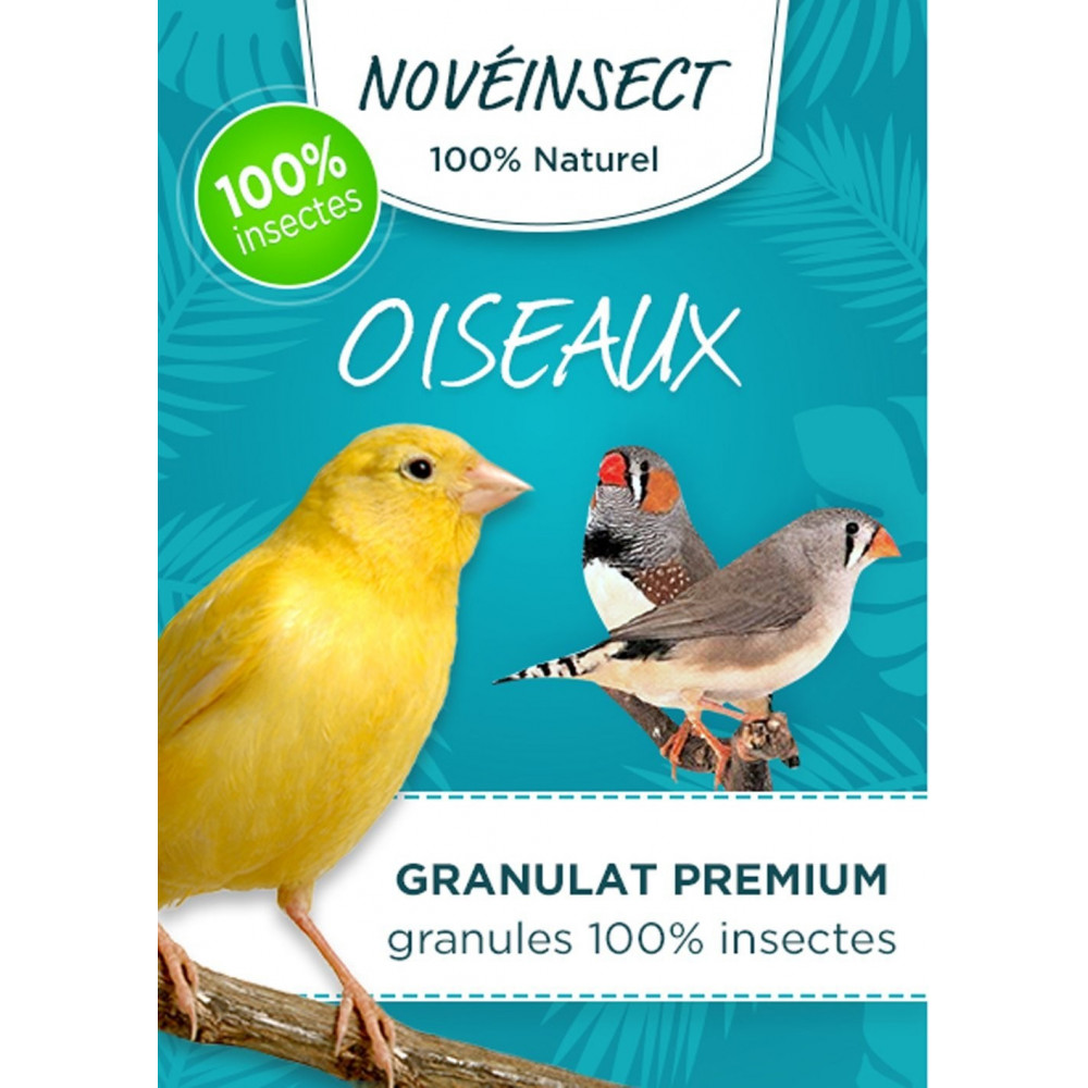 novealand Bird food granules 100% insects - 30 gram jar - hermetia illucens larvae nourriture a base Insecte