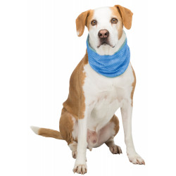 Trixie TR-30139 Refreshing bandana, Size: 47-57 cm, Colour: blue Dog