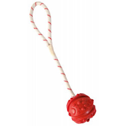 Trixie TR-33482 Aquatic game Ball on rope, Dimensions: ø 7/35 cm, random colour, for your dog. Jeux
