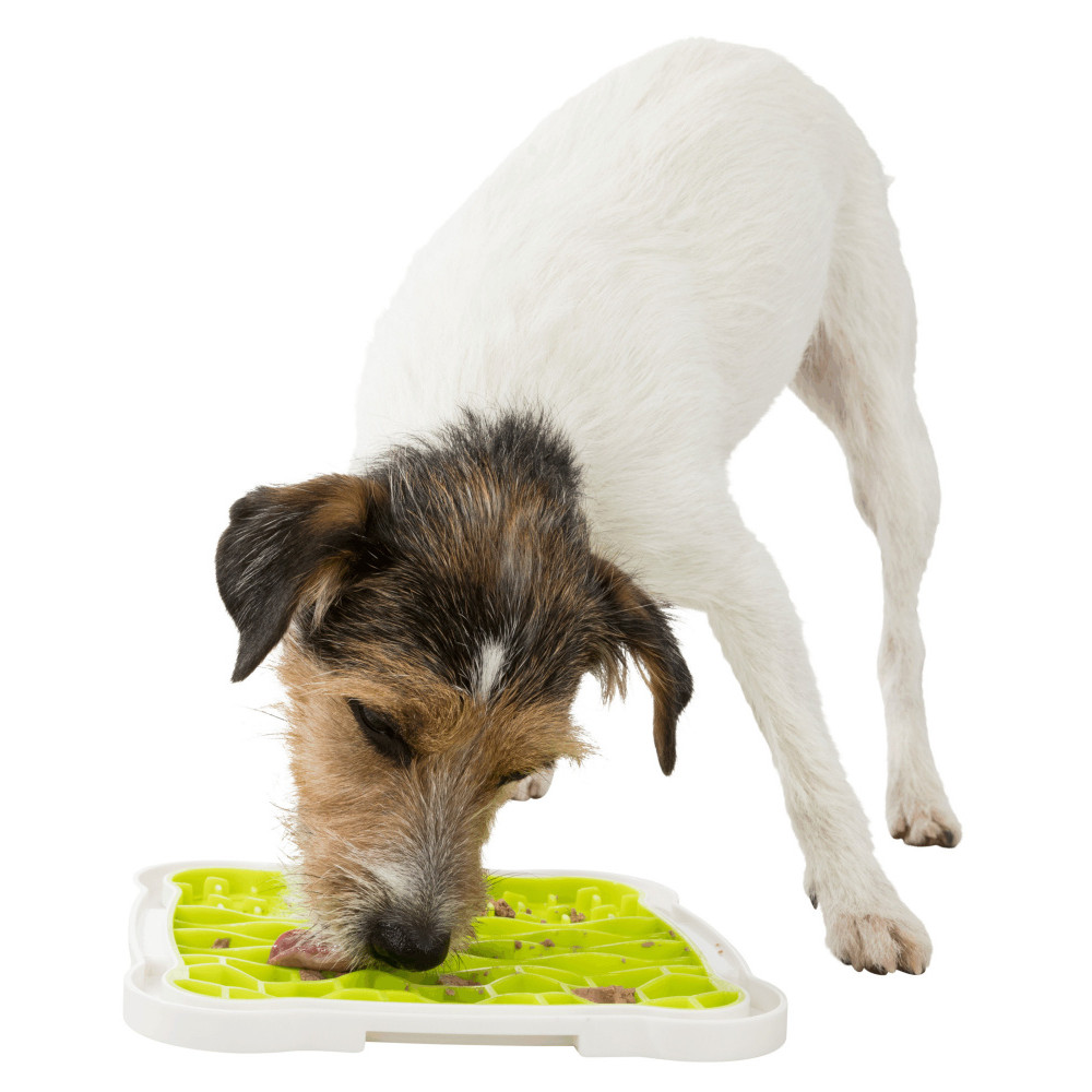 Trixie TR-34952 Lick'n'Snack Lick'n'Snack plate for your dog. Gamelle et fontaine