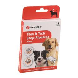 Flamingo antiparasitaire 5 pipettes de 2 ml. BATALI puces et tiques. pour chiens. FL-519841 Pipettes antiparasitaire