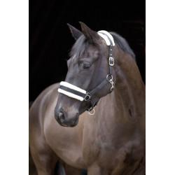 kerbl Licol avec fourrure amovible noir .pour chevaux. taille pony. Chevaux