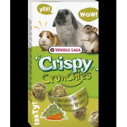 VS-462091 versele-laga Galletas ligeras de heno y zanahoria 75g para conejos y roedores Friandise