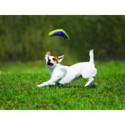 Boomerang jeux pour chien KONG Jouet Flamingo FL-514888