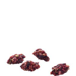 versele-laga Balles à grignoter riches en protéines à la betterave rouge et banane 100G pour rongeur VS-461444 Snacks et comp...