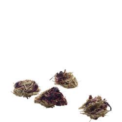 versele-laga Balles à grignoter riches en fibres au hibiscus et à la carotte 60G pour rongeur VS-461442 Snacks et complément