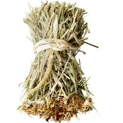 versele-laga Rouleau de foin timothy enrichi de dent-de-lion et d'origan 70G pour rongeur VS-461447 Snacks et complément