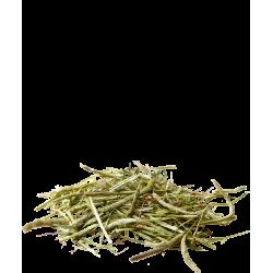 versele-laga VS-424191 Very fresh and pure green timothy hay 1KG Hay, litter, shavings