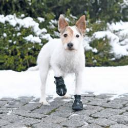 Trixie TR-19462 Bottes de protection Walker Active. Taille: S-M. pour chien. Dog Safety