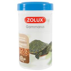 zolux Gammarus für Wasserschildkröten. 250 ml. ZO-383006 Essen und Trinken