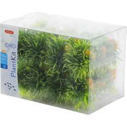 24 arbustos pequenos. idro kit planta deco . altura 3 cm. ø 3,5 cm aprox. ZO-352172 Decoração e outros