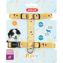 zolux Geschirr S PUPPY MASCOTTE. 13 mm. 27 bis 42 cm. gelbe Farbe. für Welpen ZO-466740JAU Welpe