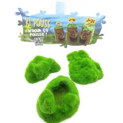 animallparadise set of 3 Pebbles . ki push. 6.7 x 9.4 x 3 cm. aquarium decoration. Decoration and other