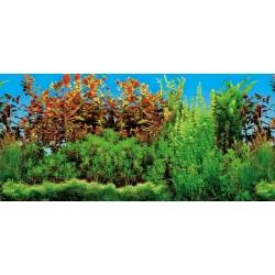 Fond décor pour aquarium 120 x 50 cm, double photo, pour eau froide. Décoration et autre  Trixie TR-8127