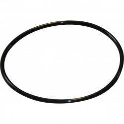 Uszczelka pokrywy filtra wstępnego pompy basenowej europa - 4405010543 4405010543 astralpool
