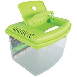 zolux Aqua-Reisebox II, Medium, Größe 28 x 20 x H 17 cm, für Fische. zufällige Farbe. ZO-303038 Zubehör