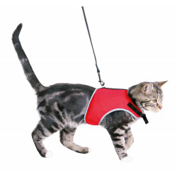 Trixie Soft harness with 1.20m lead. Belly circumference: 24-42 cm. Random colors. for cats collier laisse cage