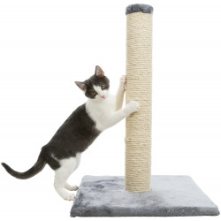 Trixie Parla scratching post, 62 cm high. Griffoirs
