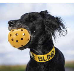 Trixie Ball with holes, especially for visually impaired and blind dogs Jeux