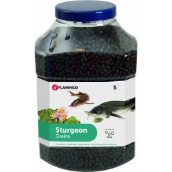 Pond Food For Sturgeons 6MM - 5L Flamingo Food FL-1030464