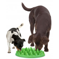 Flamingo Pet Products Anti-gobbling bowl. 40 cm. Green interactive feeder. for dogs Bowl, bowl, bowl