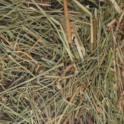 Flamingo Pet Products Mountain hay with nettles. 500 gr. for rodents. Hay, litter, shavings
