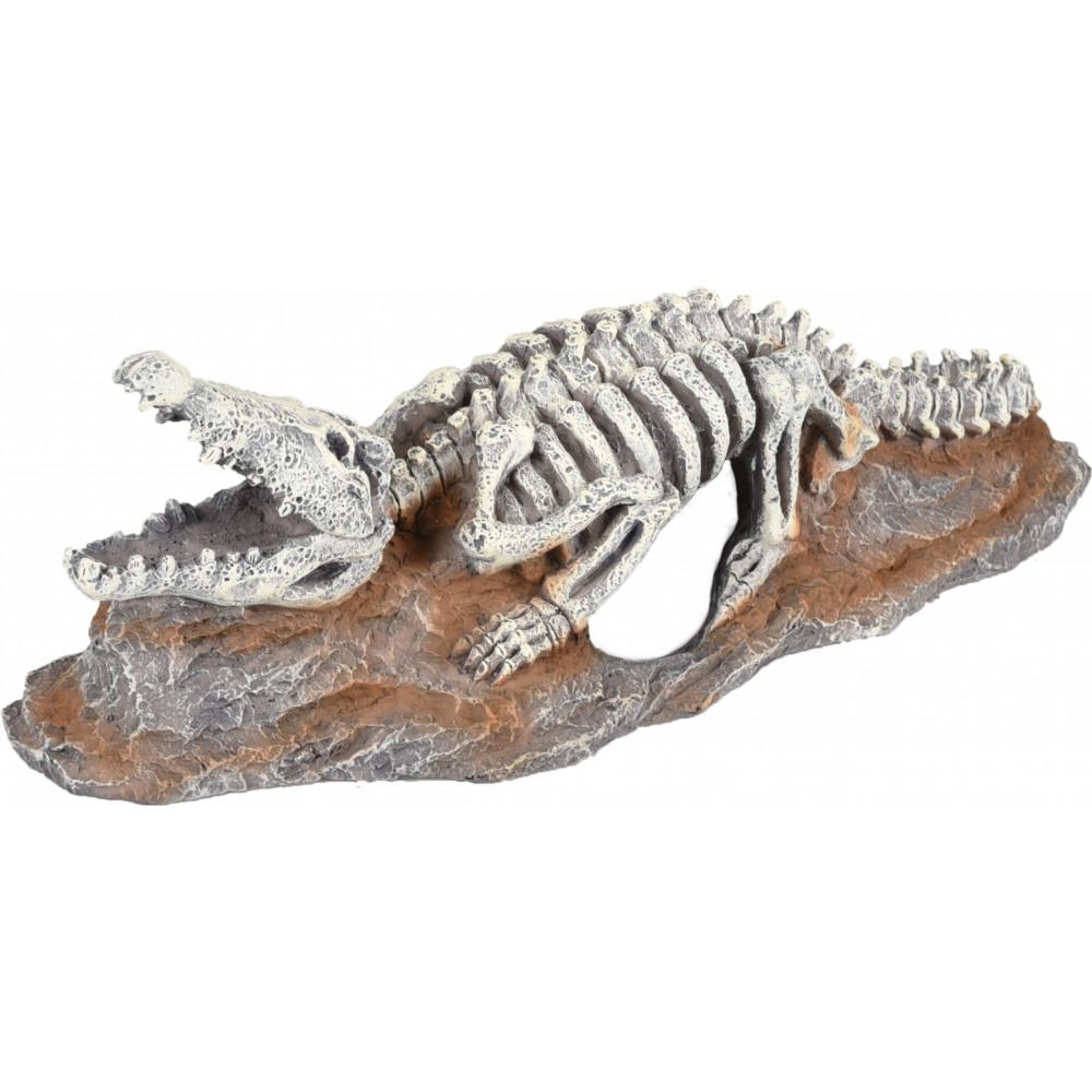 FL-410221 Flamingo Squelette crocodile, SKELO, taille: 20 x 8 x 6 cm. Décoration aquarium Decoración y otros