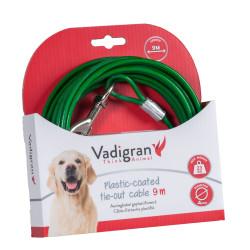 Zielony, powlekany tworzywem sztucznym kabel uwięziowy o długości 9 metrów. Max 23 kg dla psa. VA-13595 Vadigran